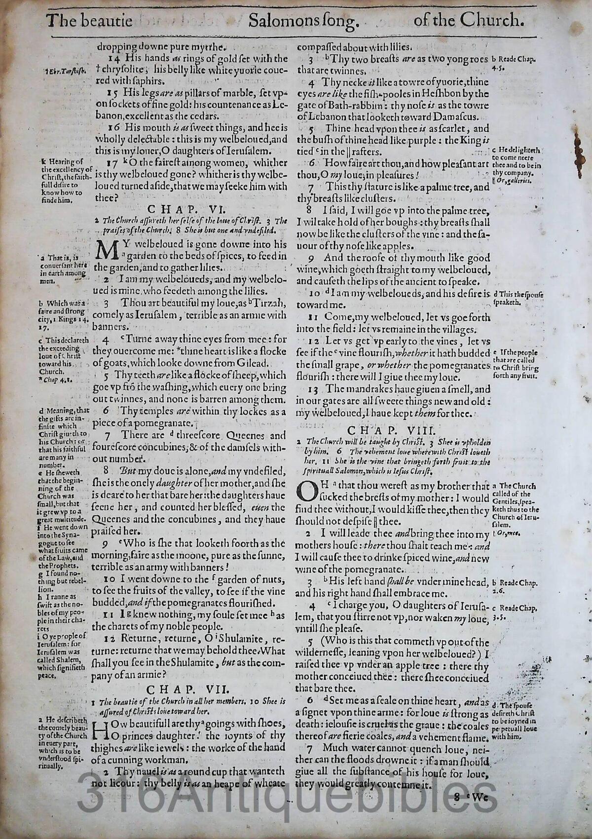 1612 GENEVA BIBLE SONG OF SOLOMON LEAVES