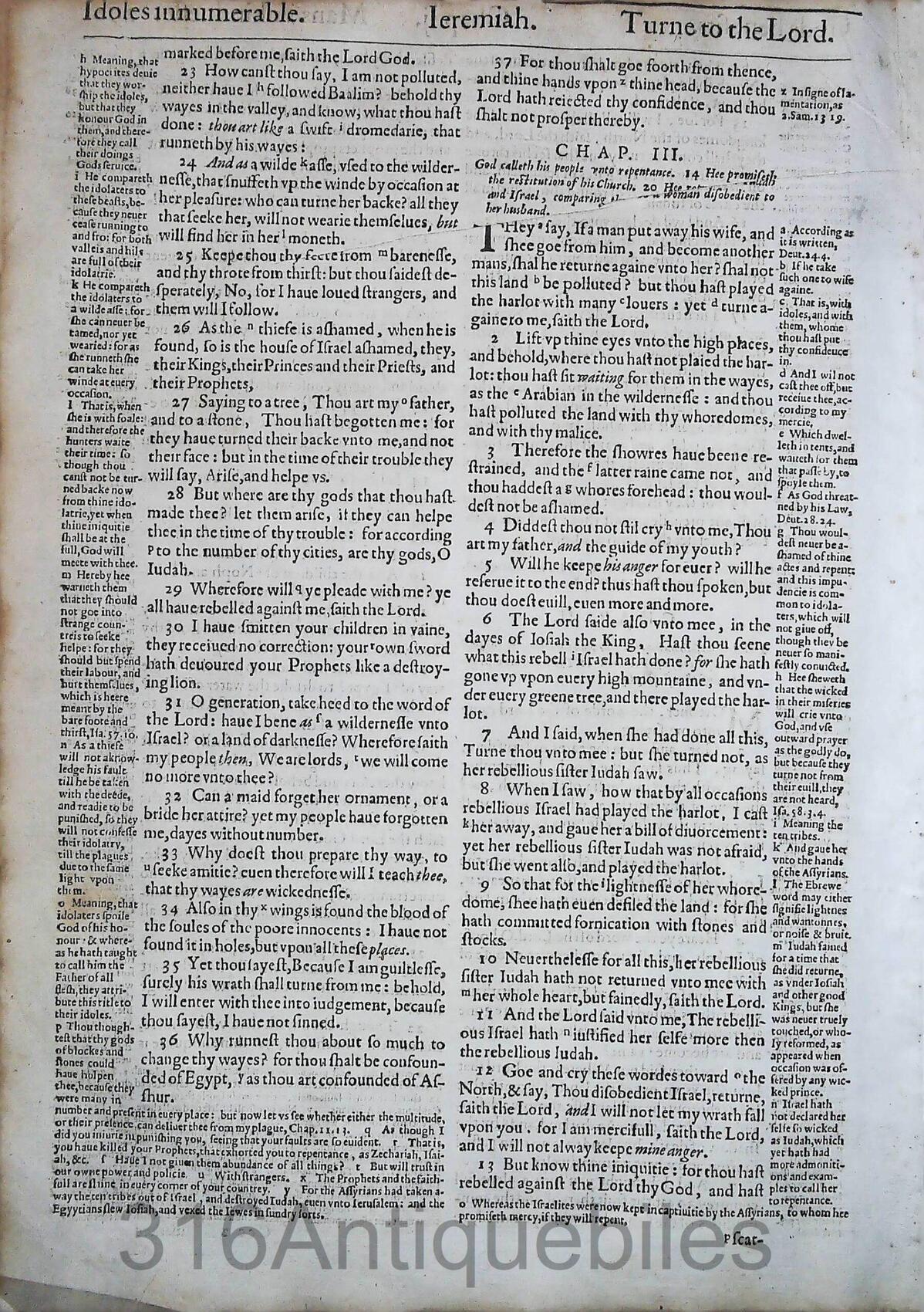 1612 GENEVA BIBLE JEREMIAH LEAVES